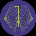 niveau-bronze-iefo